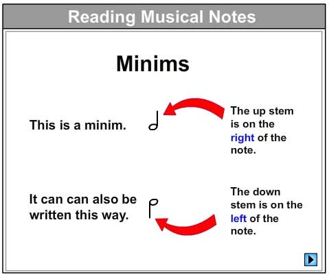 Let's Learn About Minims